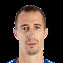 FO4 Player - R. Petrović