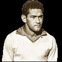 FO4 Player - Garrincha