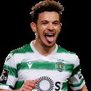 FO4 Player - Pedro Gonçalves