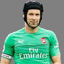 FO4 Player - Petr Čech